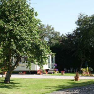 Willow Grove Photo 25